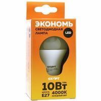 Купить лампа светодиодная e27 холодный свет 10w 220v eco груша старт 1/10 в Москве