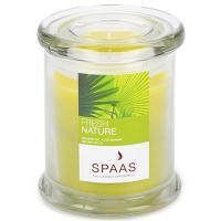 Купить свеча н110хd90 мм в стекле арома премиум свежесть природы exsperience spaas 1/6 в Москве
